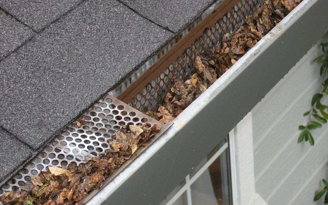5 Reasons Why You Need Gutter Cleaning Services